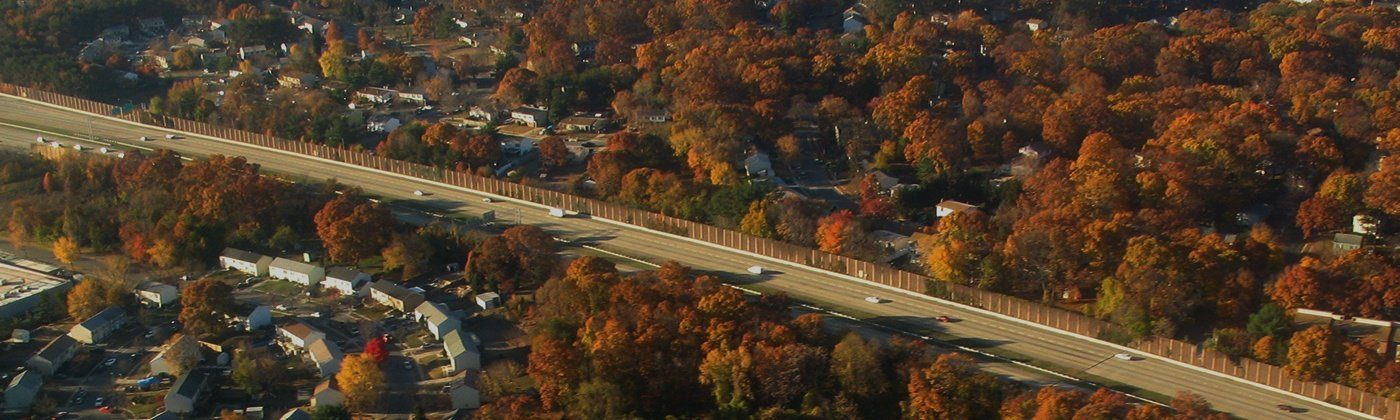 Overhead view of fall leaves and highway